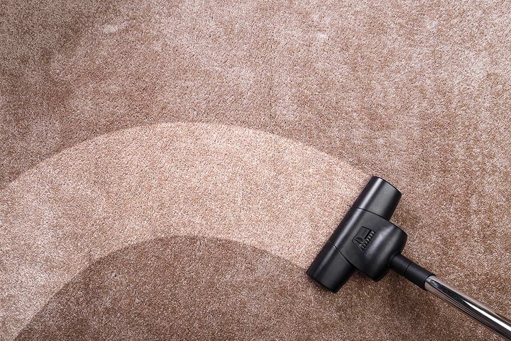 commercial carpet care west palm beach tamcare services